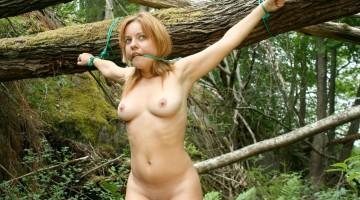 bondage-sex-crucifiction