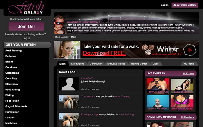 Bdsm informational site
